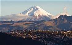 Suiten im Swissôtel Quito