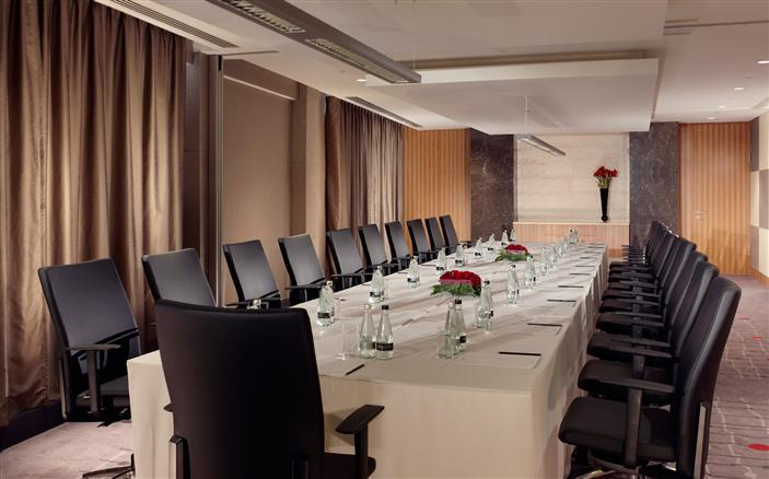 Lomonosov Meeting Room (IN THE SWISSOTEL CONFERENCE CENTRE)