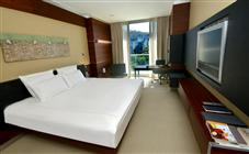 Swiss Advantage City View Room