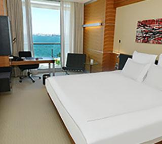 Deniz Manzaralı Swiss Executive Oda