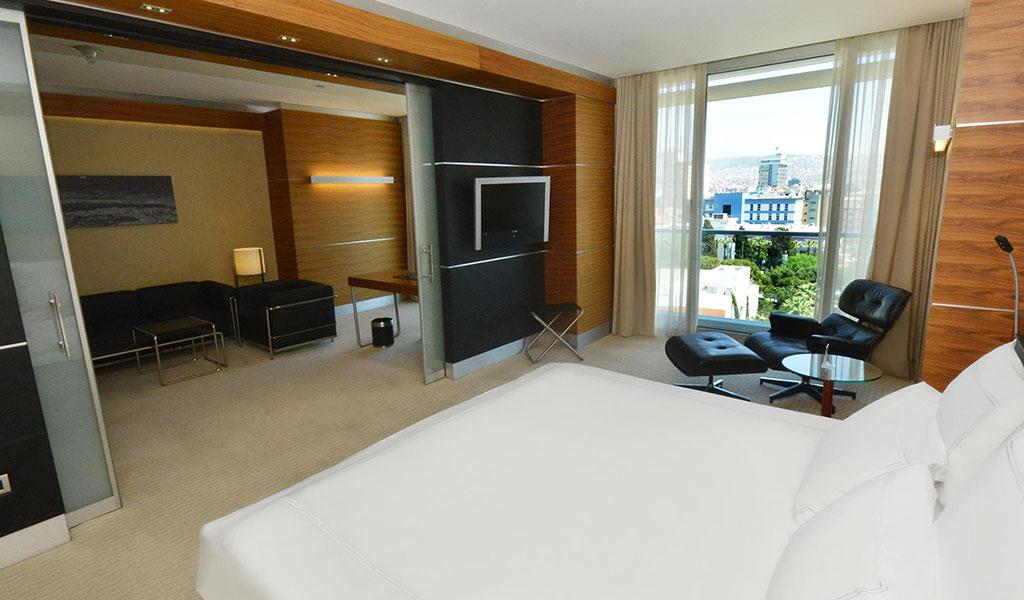 伊兹密尔艾菲斯瑞士酒店商务园景套房